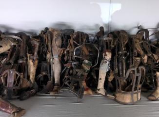 IMG_20150108_111839 Auschwitz