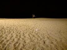 praia Barceloneta noite