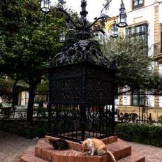 Bairro Judeu Sevilha praça santa cruz 2