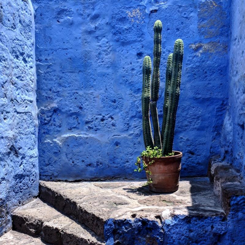 Convento de Santa Catalina Arequipa Peru 2