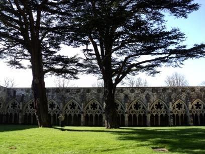 Salisbury Catedral Claustro 2