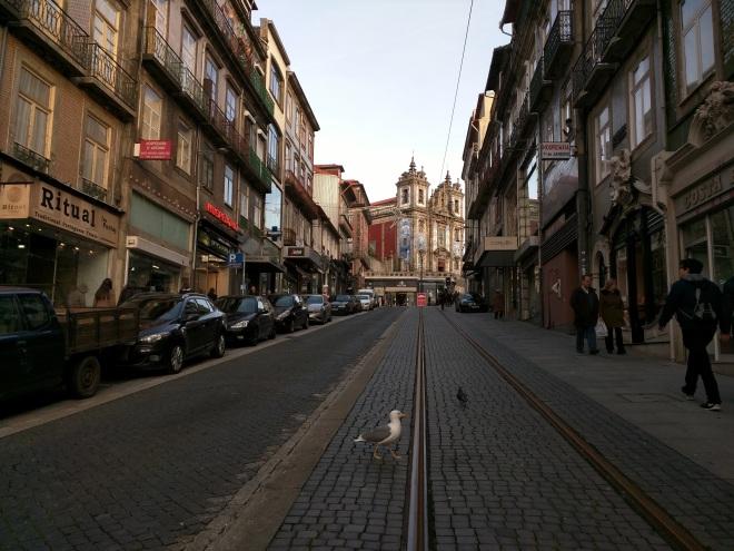 Portugal Porto gaivota igreja carmo azulejos