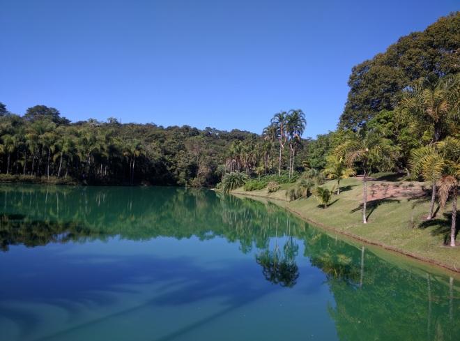 Inhotim laguinho