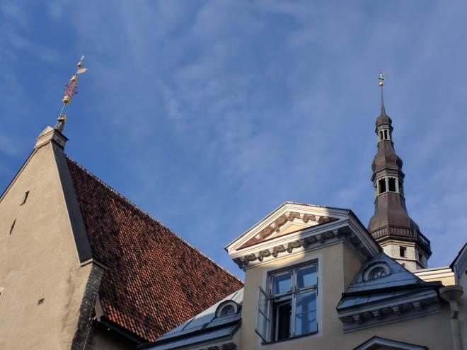 Tallinn centro histórico prefeitura velho Thomas estátua