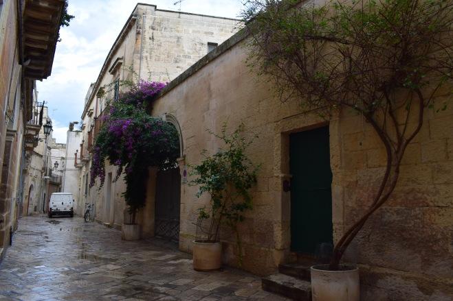 Puglia Lecce arvores