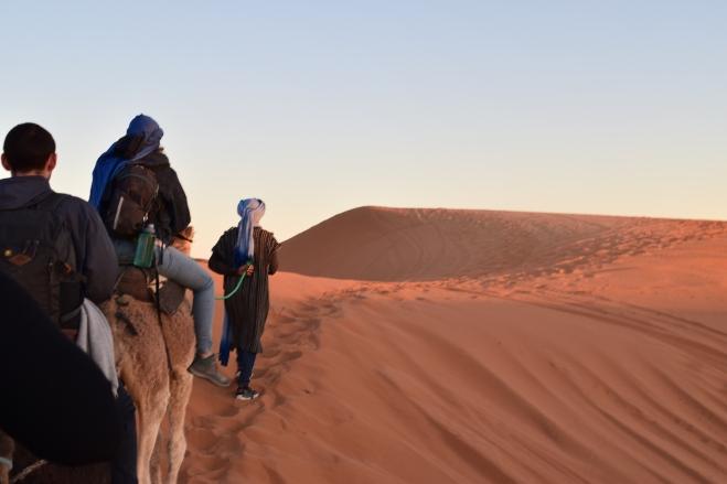Saara Marrocos passeio nos camelos 2