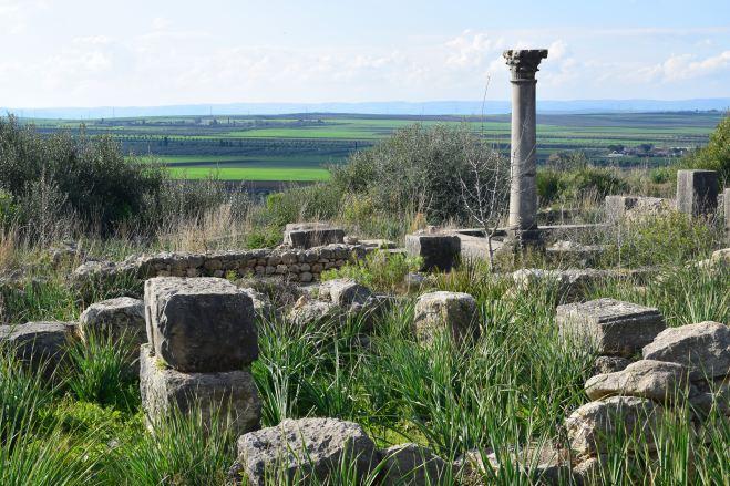 Volubilis ruinas romanas Marrocos coluna cercada de paisagem verde