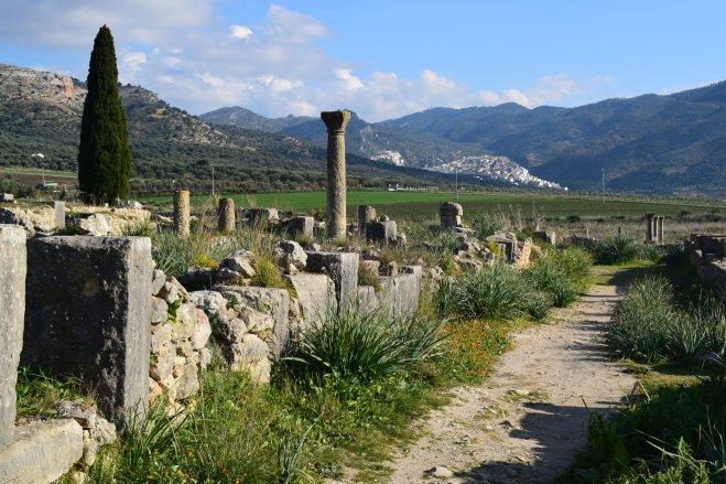 Volubilis ruinas romanas Marrocos com Moulay Idriss no fundo