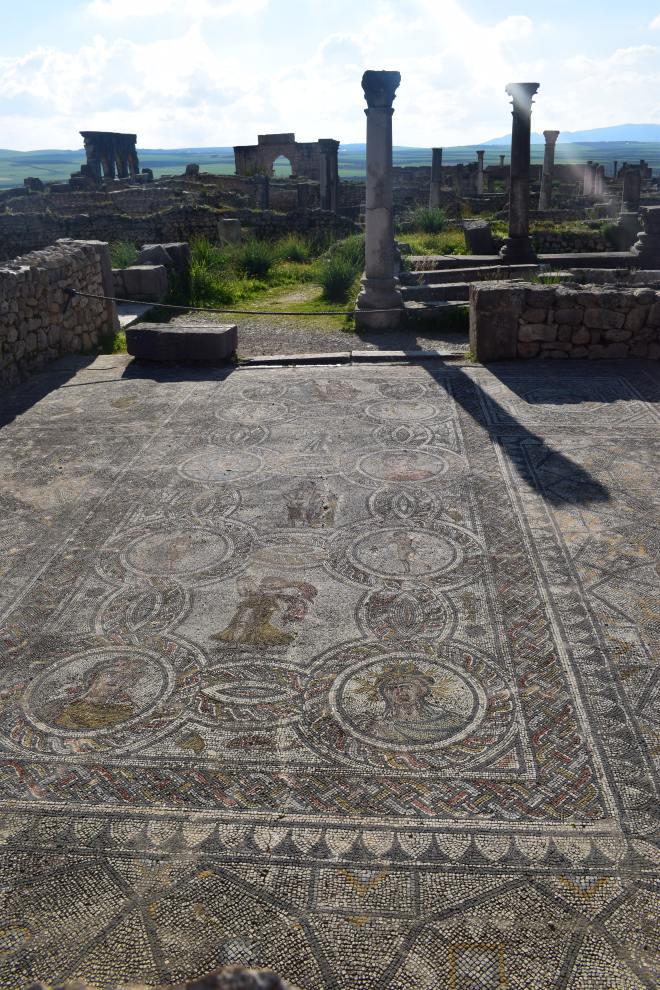 Volubilis ruinas romanas Marrocos mosaico 3