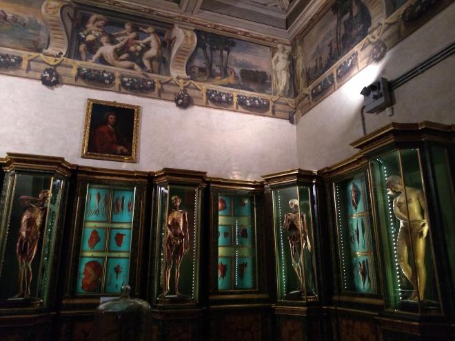 Bologna universidade Museu palazzo poggi salas