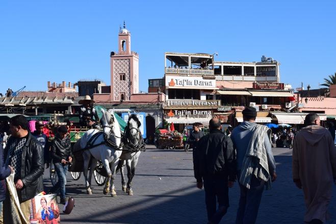 Marrocos Marrakech praça central djema el-fna manhã 2
