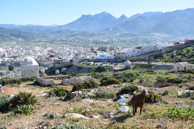 Marrocos Tetouan cemitério kasbah vista 2